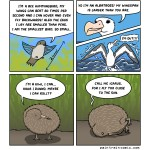 comic-2013-09-27-AmazingBirds.jpg