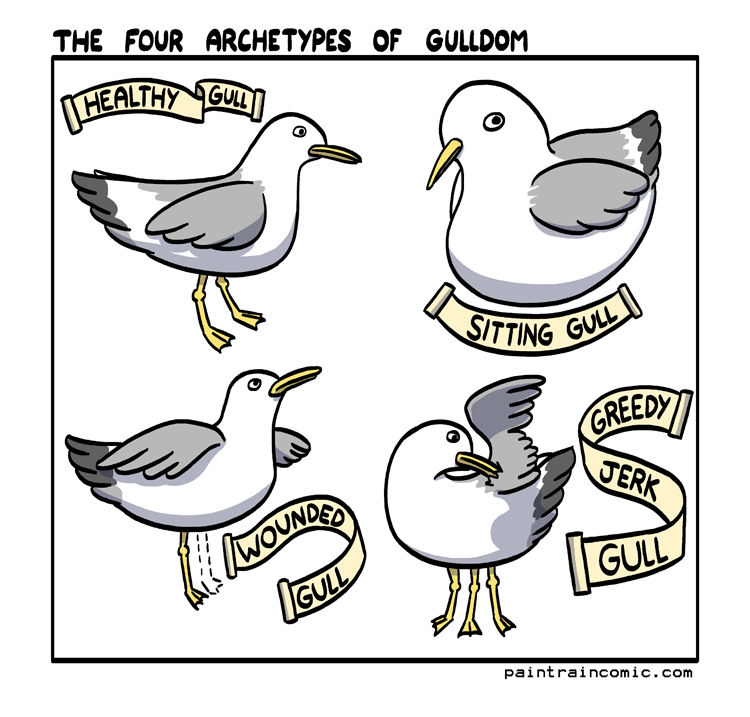 Gulls is all about dem gams